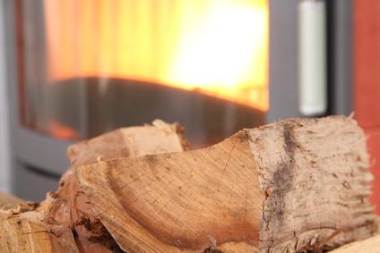 Kaminofen mit Holz und Pellets
